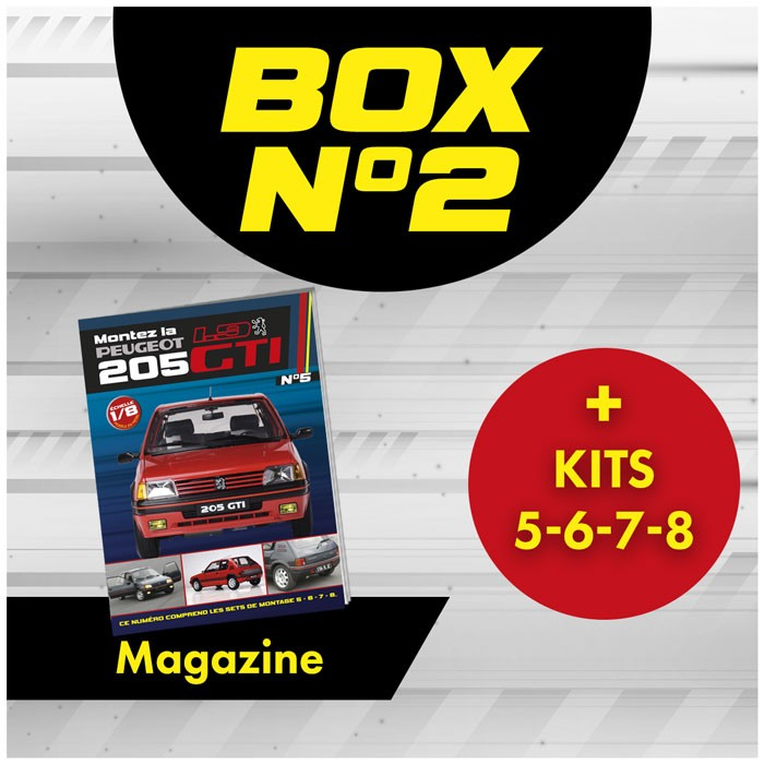 Peugeot 205 GTi BOX 2