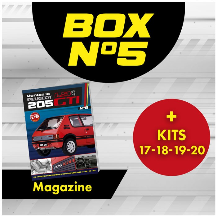 copy of Peugeot 205 GTi BOX 5