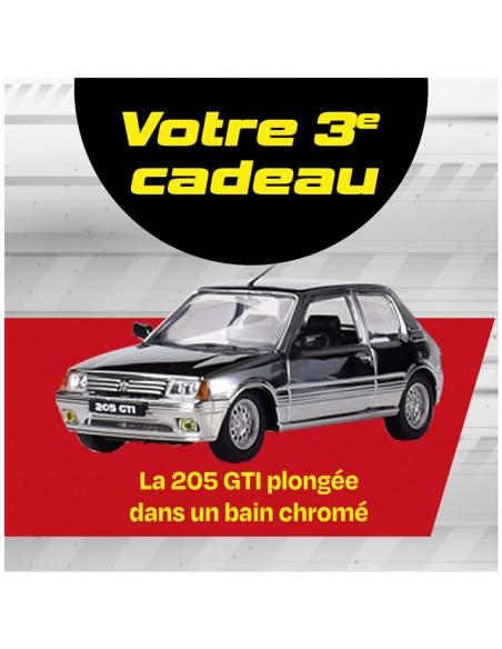 Peugeot 205 GTi BOX 10
