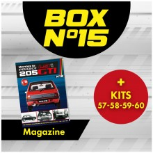 Peugeot 205 GTi BOX 15